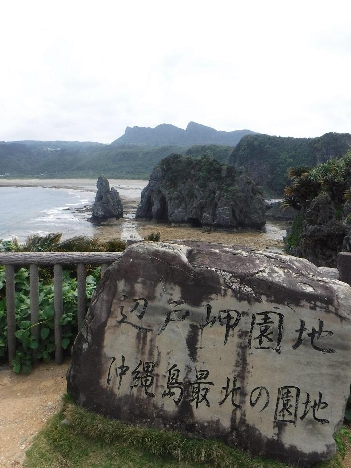 ◆沖縄出張 その2  ~初めてのやんばる~ _f0238779_20195079.jpg