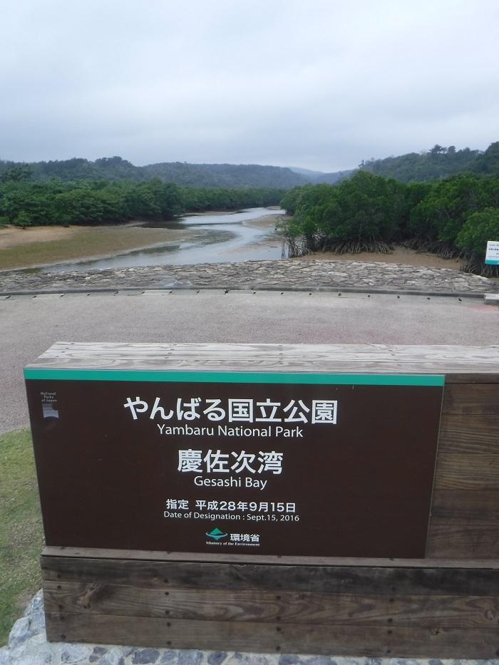 ◆沖縄出張 その2  ~初めてのやんばる~ _f0238779_20243481.jpg