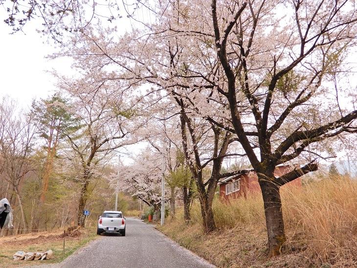 武川町F山さん邸の現場より 3_a0211886_14305100.jpg