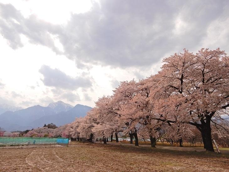 武川町F山さん邸の現場より 3_a0211886_14392467.jpg