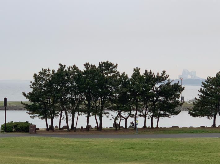 葛西臨海公園ナイトマラソンスプリングステージ_f0296312_17501795.jpg