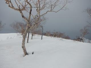 上はカリカリ、下はグサグサでギャフン…御嶽山_c0359615_20342511.jpg