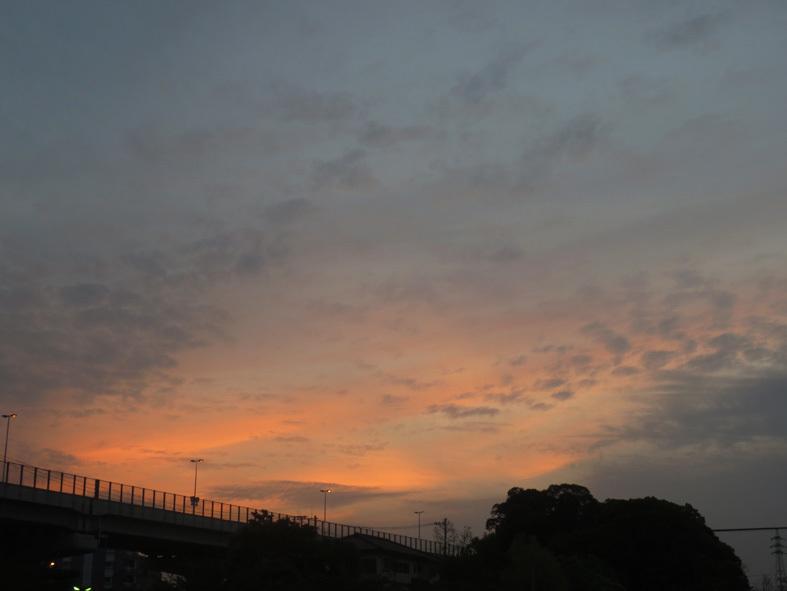 ■満開のネモフィラを観に海の中道海浜公園へ、そして週替わりの夕暮れ[4/21]_d0190217_22193131.jpg