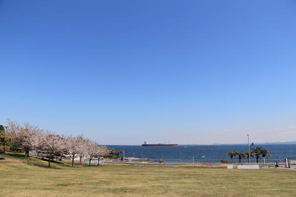 【テラス席ペット可】アクアマーレ/横須賀美術館_e0234741_21191044.jpg