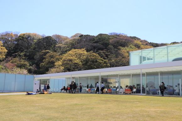 【テラス席ペット可】アクアマーレ/横須賀美術館_e0234741_21191086.jpg