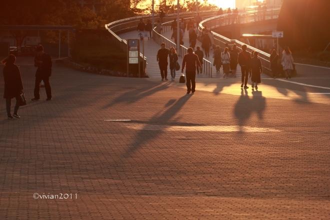 大阪 高さ日本一の大観覧車(レッドホース オオサカホイール) in 万博記念公園 _e0227942_22121051.jpg