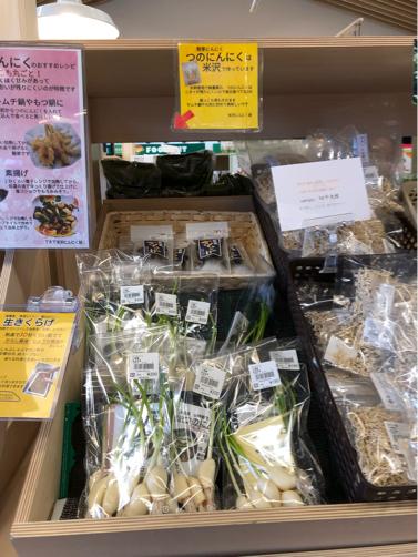 春の山形旅行#1☆道の駅よねざわで見知らぬ山菜?に会う。_f0207146_14033940.jpg