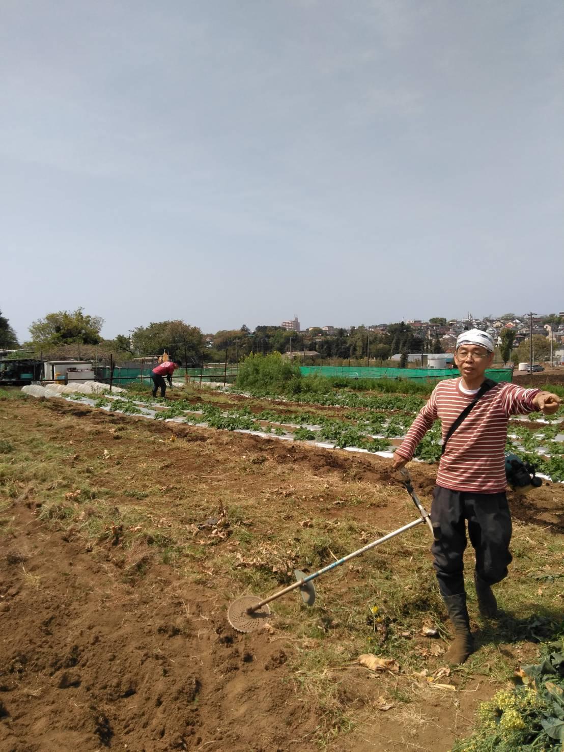 夏野菜の畝作り 今朝は4名です_c0222448_15274922.jpg