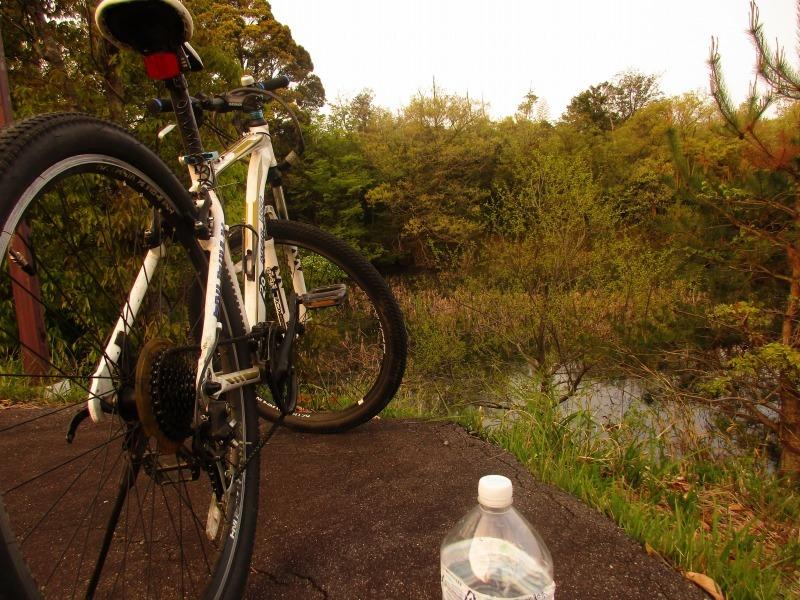 日常「サイクリング」_b0362459_21365085.jpg
