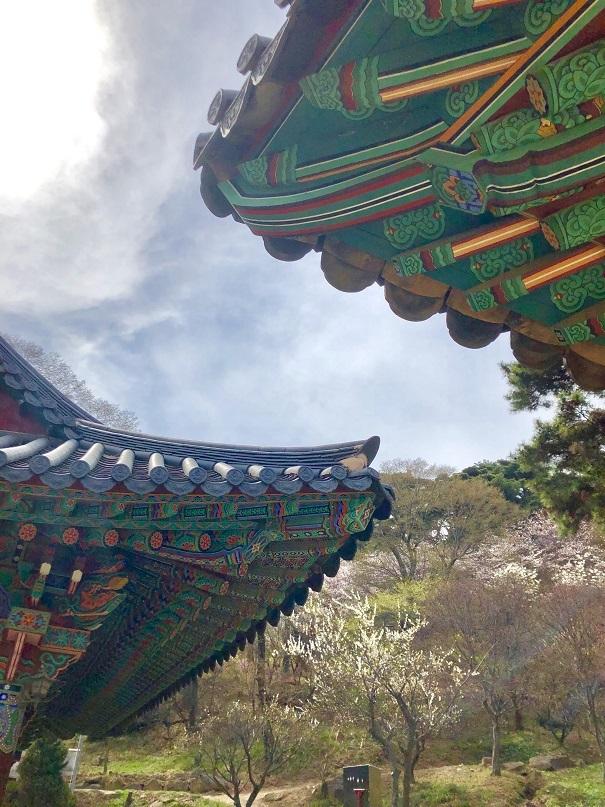 ソウルから江華島(カンファド)へ_b0060363_16280330.jpeg