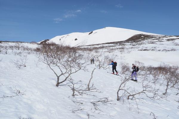 春の山歩き_e0068873_16311610.jpg