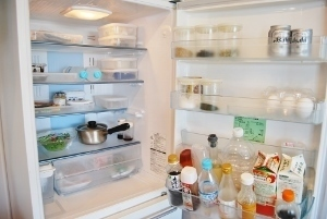 港区エコプラザで「冷蔵庫の整理法」を行います_f0159480_22550982.jpg