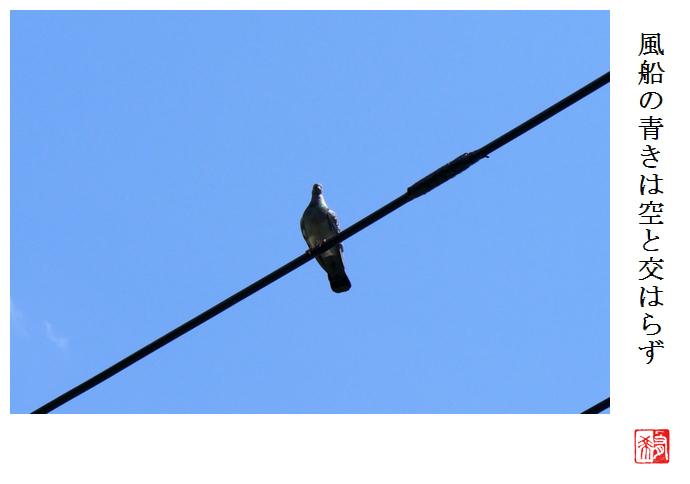 風船の青きは空と交はらず_a0248481_21510592.jpg