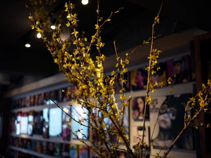 今週のWORLD BOOK CAFEさんは「レンギョウ」。2019/04/20。_b0171193_18585768.jpg