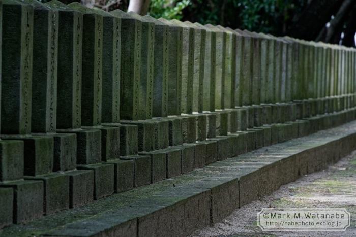 桜山神社_e0135098_01290805.jpg
