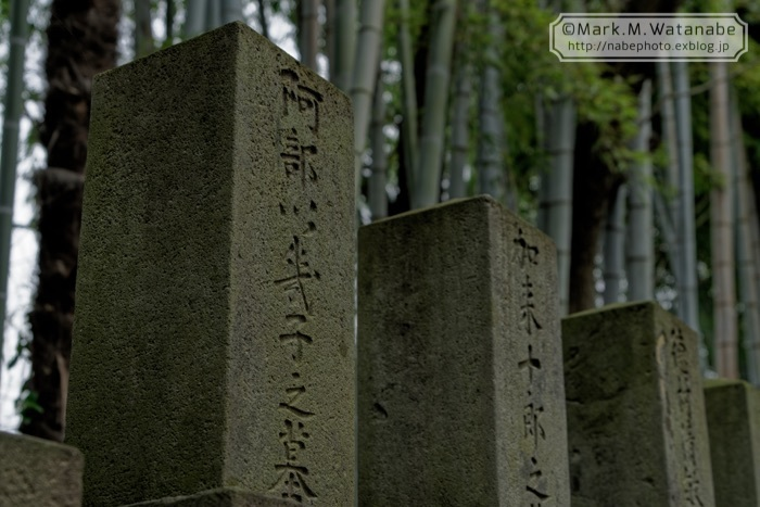 桜山神社_e0135098_01293221.jpg