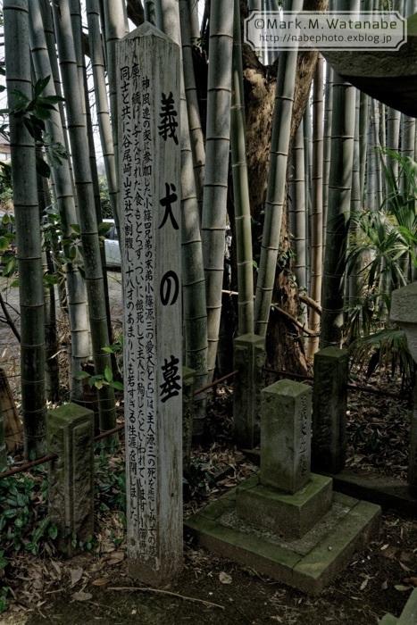 桜山神社_e0135098_01303937.jpg