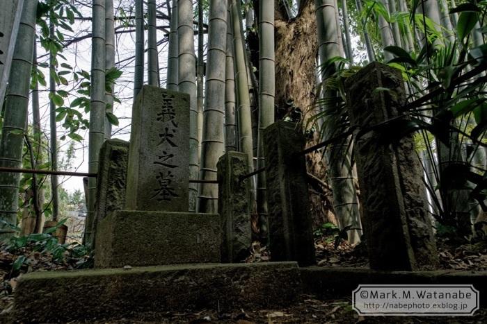 桜山神社_e0135098_01305142.jpg
