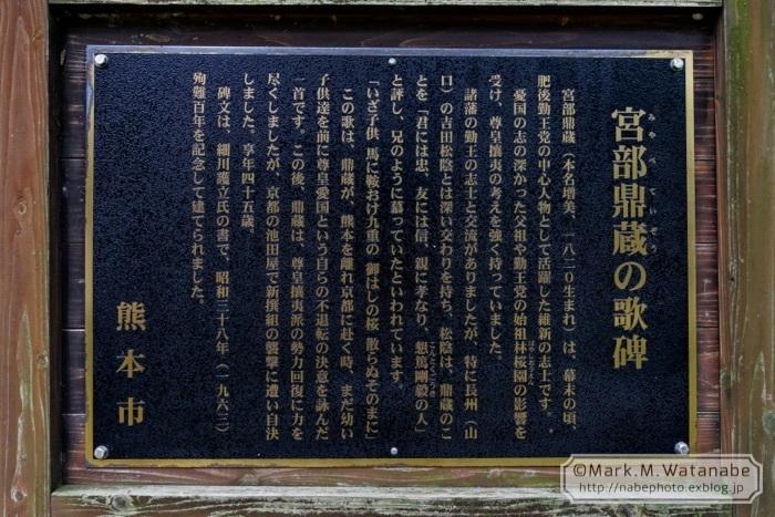 桜山神社_e0135098_01312880.jpg