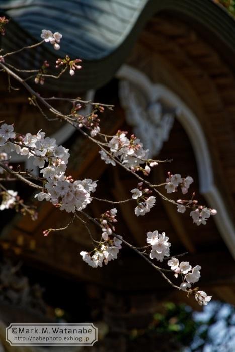 阿蘇二宮神社_e0135098_01441679.jpg
