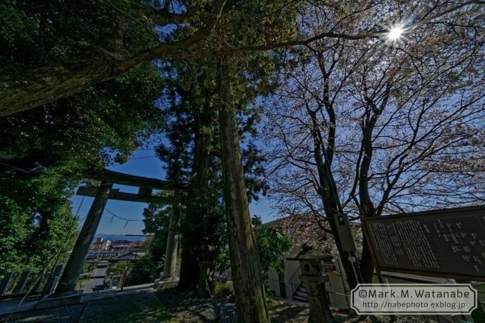 阿蘇二宮神社_e0135098_01443210.jpg