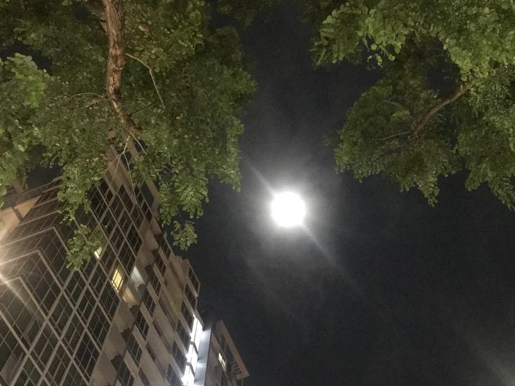夜中に火災で全員避難!(Village Hotel Katong)_c0212604_3343969.jpg