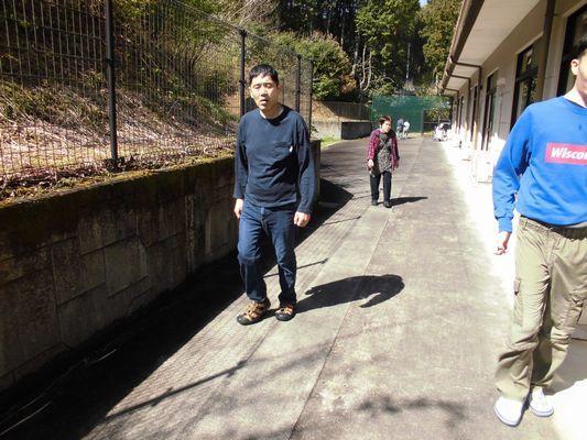 4/18 散歩_a0154110_09515146.jpg