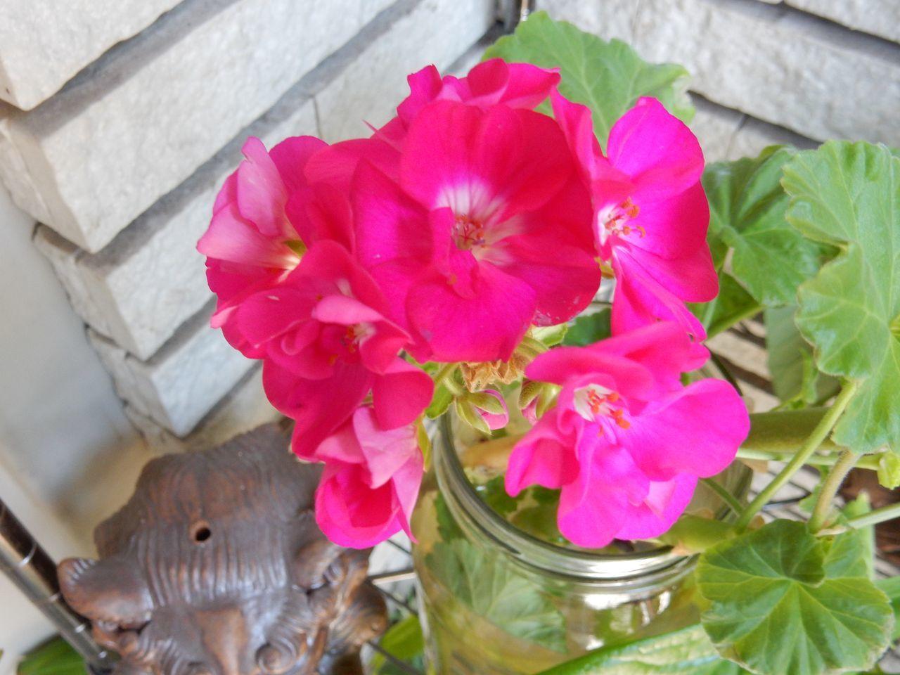 春ですね_c0025115_22324365.jpg