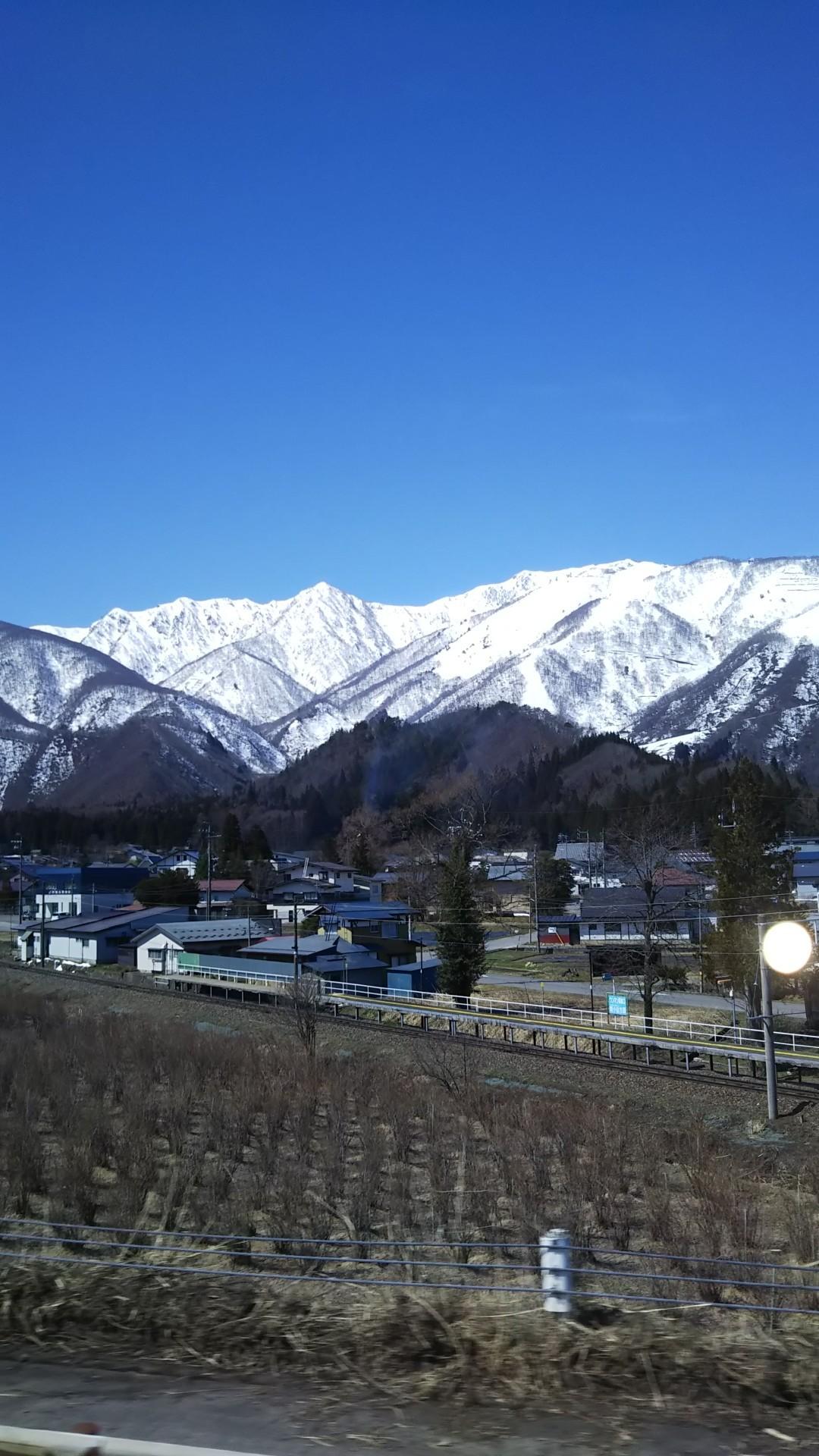 天下第一の桜 高遠さくら_a0142317_14512331.jpg