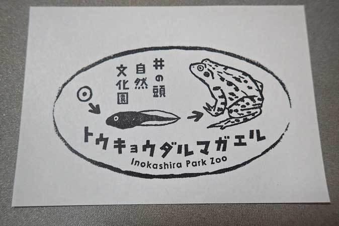 メンフクロウとアオダイショウ(井の頭自然文化園 August 2018)_b0355317_22330937.jpg