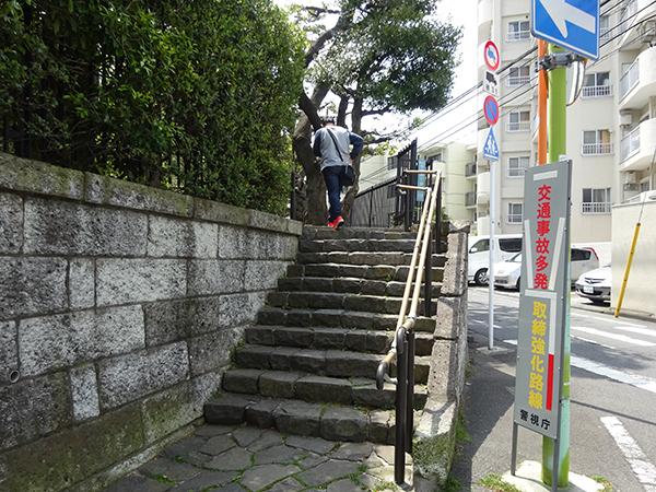 八重桜を見に・・・_f0097523_15304661.jpg