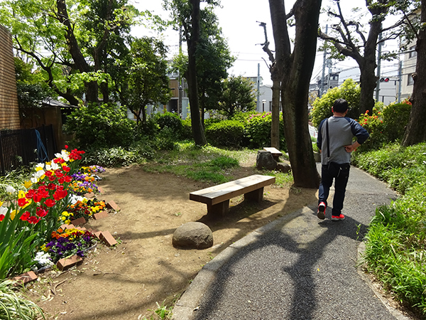 八重桜を見に・・・_f0097523_15304969.jpg