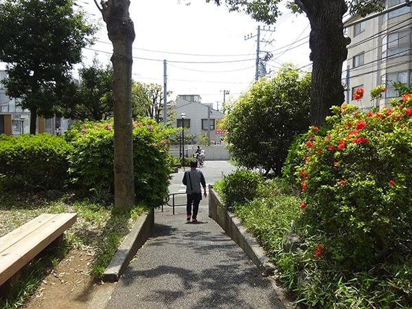 八重桜を見に・・・_f0097523_15305566.jpg