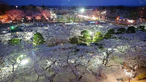 官庁街のさぐら 十和田市_c0299631_23531073.jpg