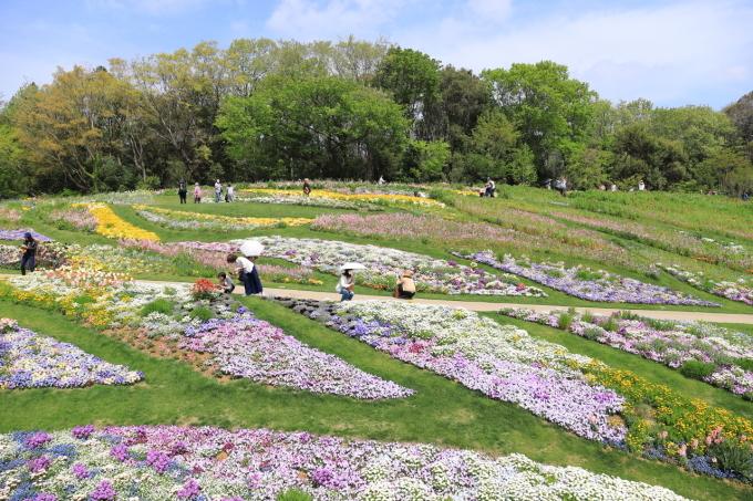 【里山ガーデンフェスタ】バードショー_f0348831_22324848.jpg