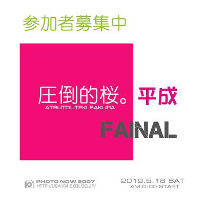 2019京都桜~高瀬川沿いから_e0363038_11075808.jpg