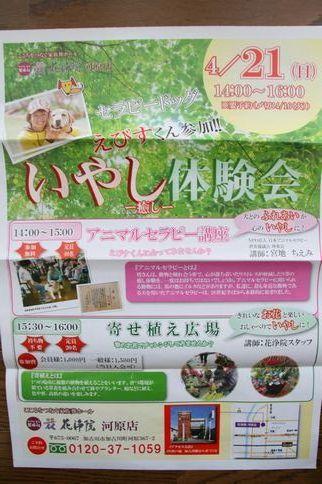 花浄院アニマルセラピー講座_e0364854_14412777.jpg