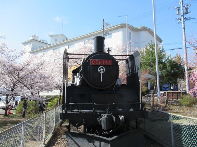 小諸城址・懐古園 * 桜が満開でした~軽井沢の桜も開花しました♪_f0236260_14323211.jpg