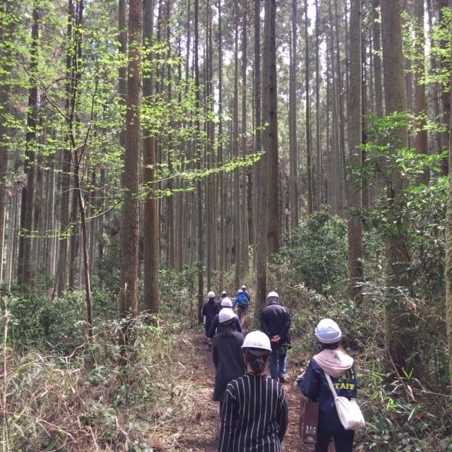 森林ツアーに行ってきました!_b0112371_17342920.jpg