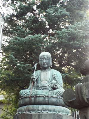 桜見物 近所から池上、目黒川まで見たこと_f0211178_18445357.jpg