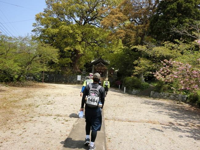 第10回糸島三都110キロウォークの完歩報告_e0294183_11042901.jpg