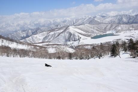 2019年4月6日三俣の定宿「弥八」に泊まり、神楽スキー場で滑る_c0242406_15411761.jpg