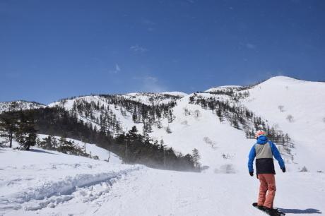 2019年4月6日三俣の定宿「弥八」に泊まり、神楽スキー場で滑る_c0242406_15485961.jpg