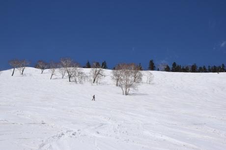 2019年4月6日三俣の定宿「弥八」に泊まり、神楽スキー場で滑る_c0242406_15533245.jpg