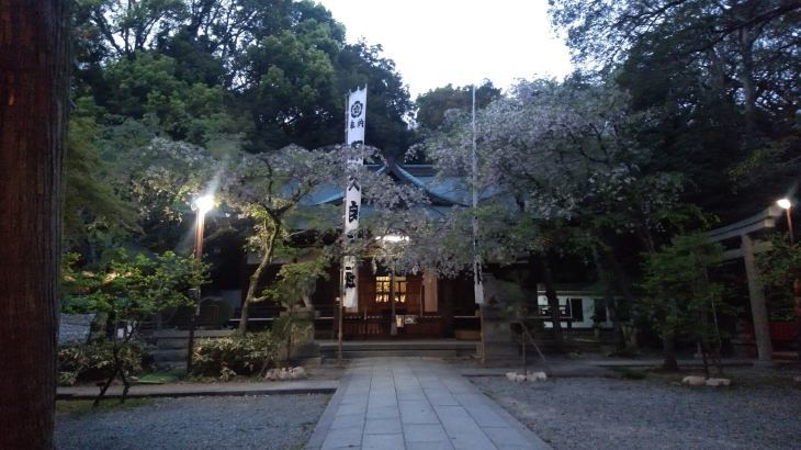 春山合宿トレーニング_d0264710_10054034.jpg