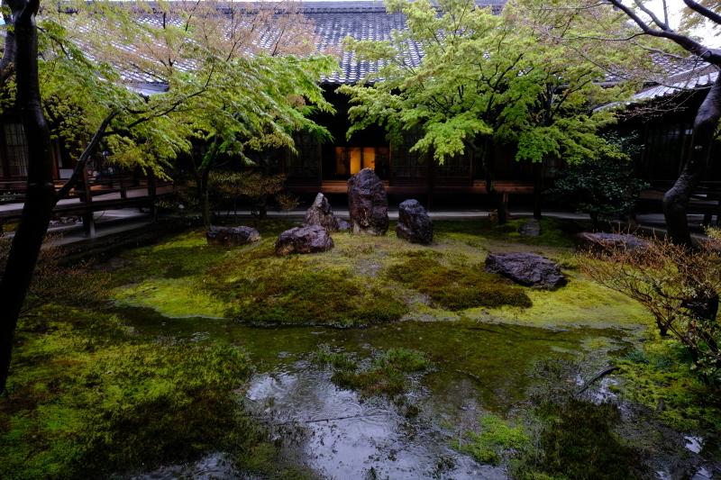 京都の旅 \'19 その2_e0000910_09231424.jpg