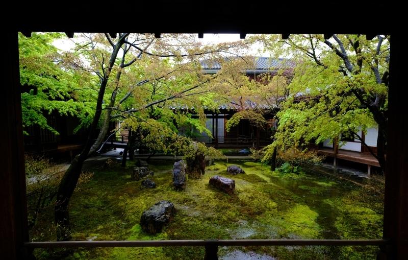 京都の旅 \'19 その2_e0000910_09264889.jpg