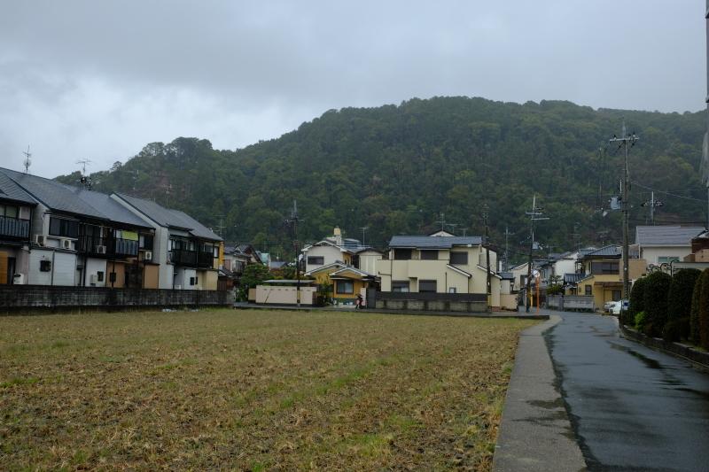 京都の旅 \'19 その2_e0000910_09401547.jpg