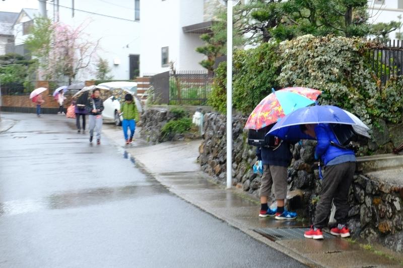 京都の旅 \'19 その2_e0000910_09402379.jpg