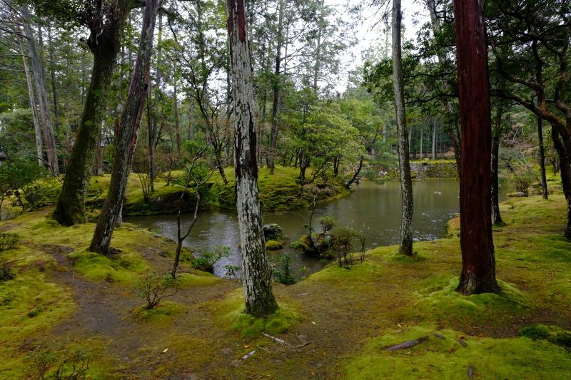 京都の旅 \'19 その2_e0000910_09590306.jpg